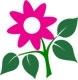 Begonvil Çiçekçilik