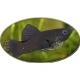kılıçkuyruk balık